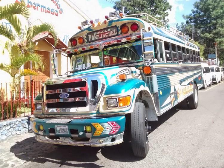chicken+bus